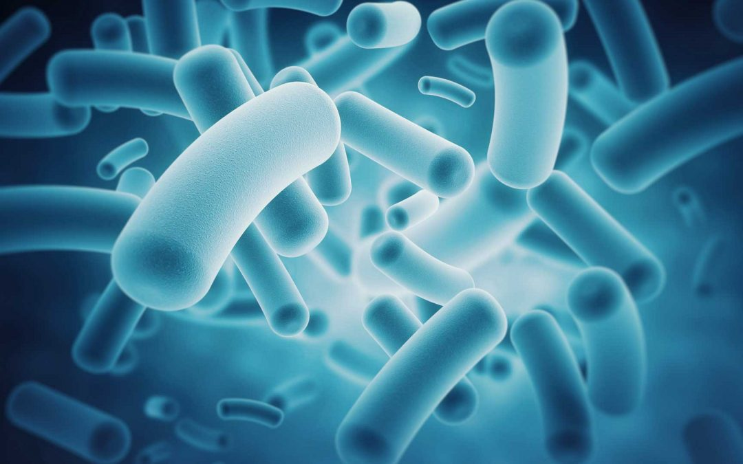The Microbiome and Neurodevelopment